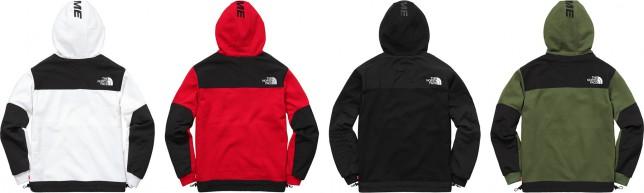 Steep Tech Hooded Sweatshirt Variation Back