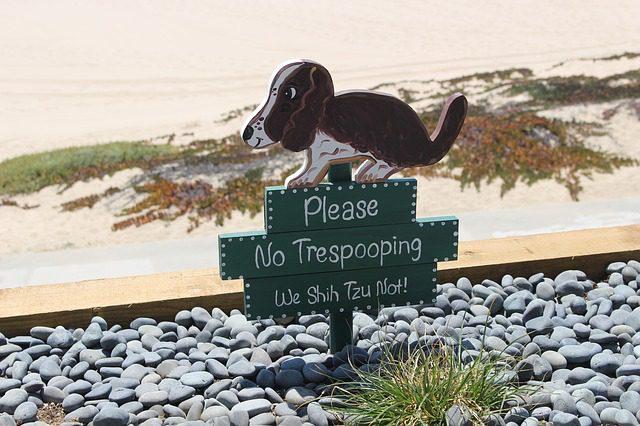 犬ウンコ禁止